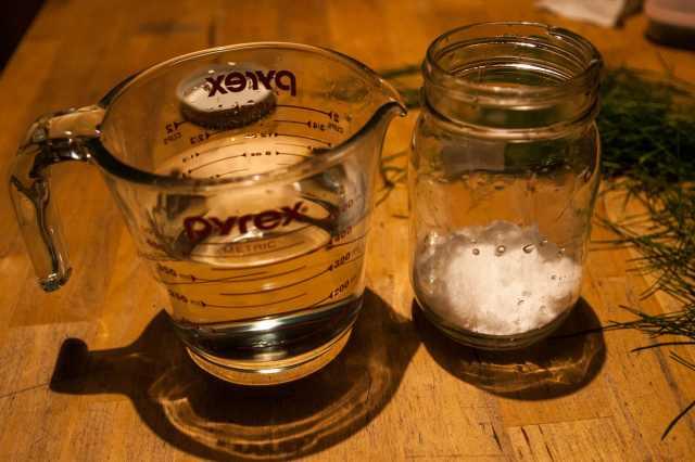 Pine needle cider (4)