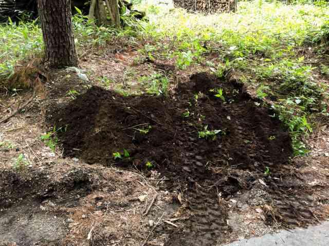 backhoe (1)