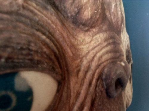E.T.の顔