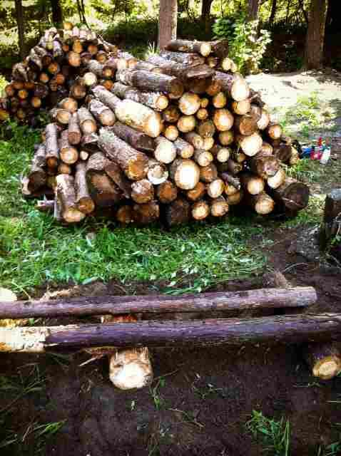 firewood (21)