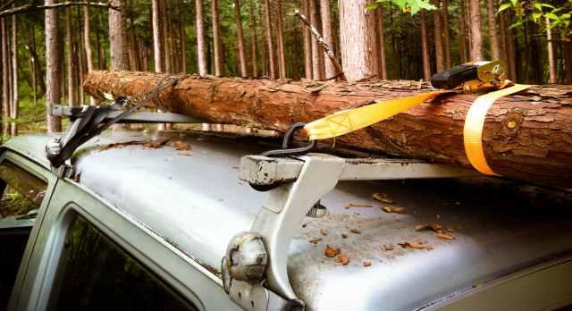 firewood (30)