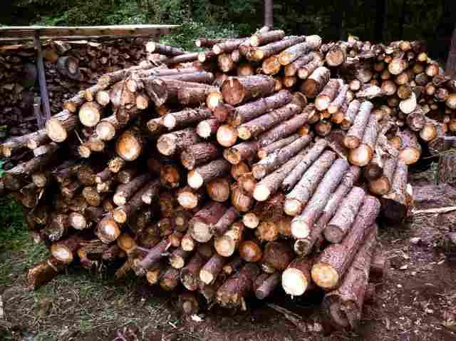 firewood (32)