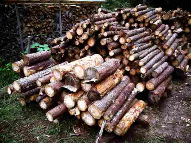 firewood (33)