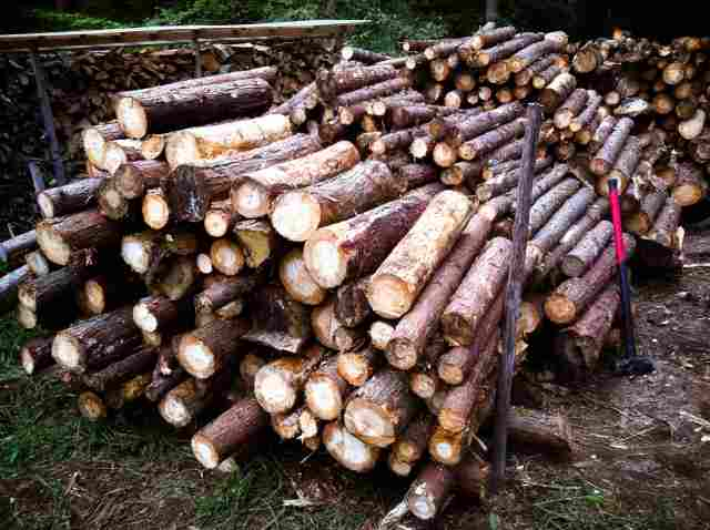 firewood (34)