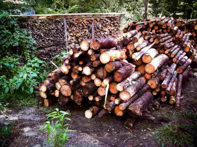 firewood (36)