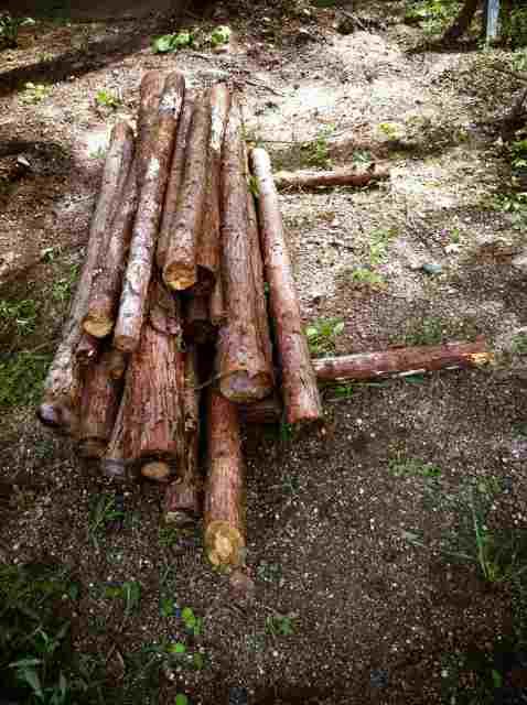 firewood (8)