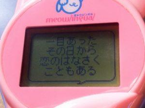 meowlingal-16