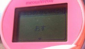 meowlingal-7