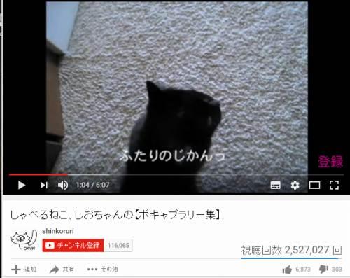 translation_sio2