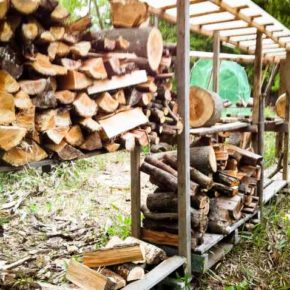 Consumption of firewood (1)