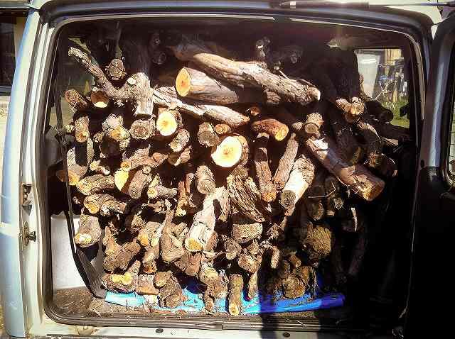firewood6