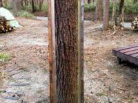 [セルフビルドの小屋][DIY]小屋の採光取り|タイニーハウスの作り方