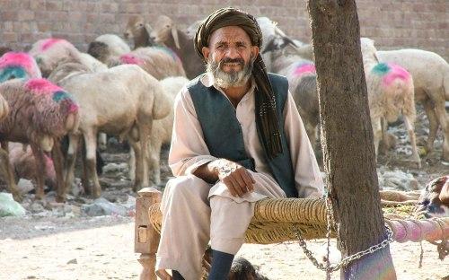 peshawar_4_1-1-7