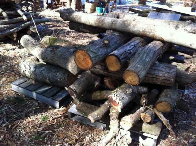 Wood Stove (1)