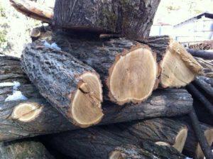 firewood (2)