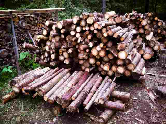 firewood (28)