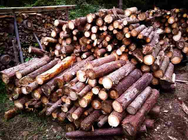 firewood (29)