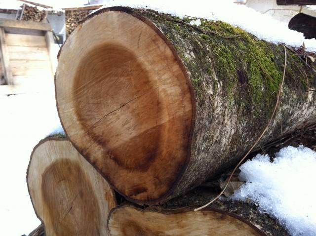 firewood (3)