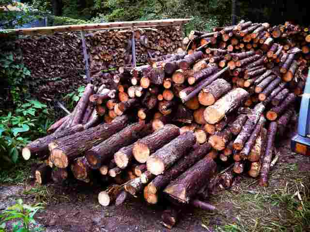 firewood (35)
