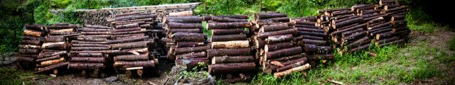 firewood (37)