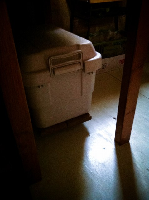 kitchen floor (11)