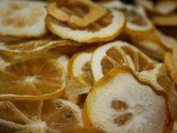 ネコとレモングラス|ネコのレモングラス好きは世界的?