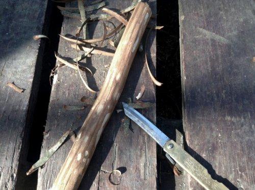 リトルフォレスト、いち子の木のお玉