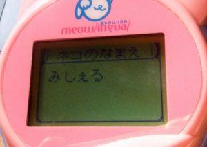 meowlingal-14