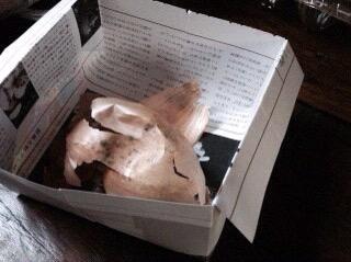 紙のゴミ箱