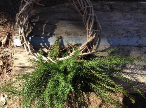 杉の枝を挿していく