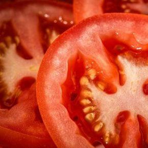 tomato_sliced