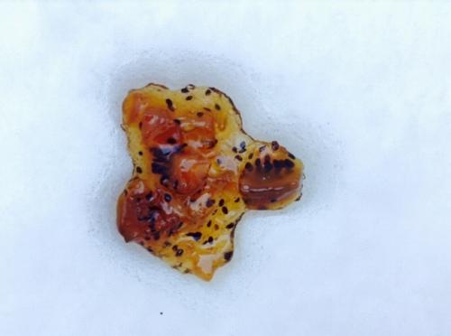 雪キャンディ