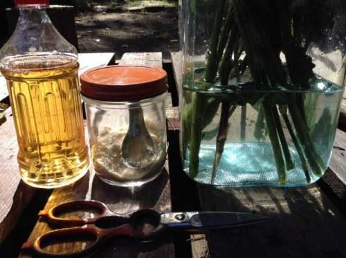 切花にお酢と砂糖